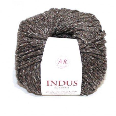 Antonio del Río Indus 51