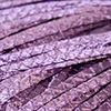Milan-Cintra 008 lila